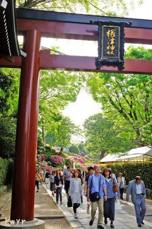 根津神社の大鳥居