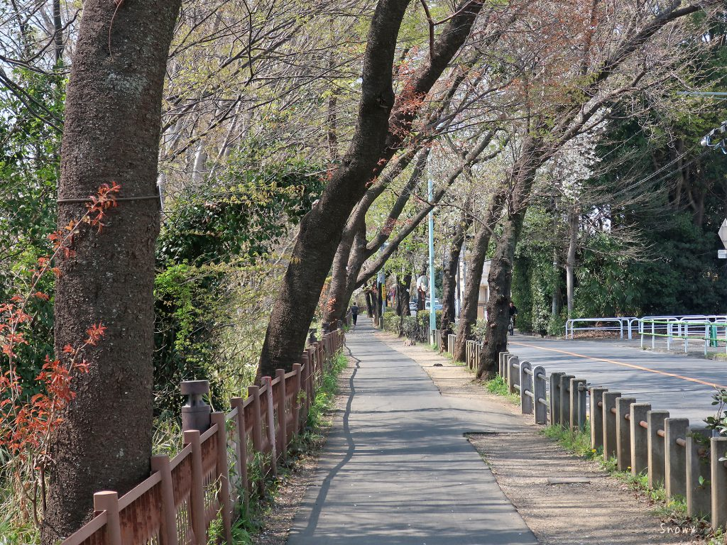 小桜橋の前から見た五日市街道