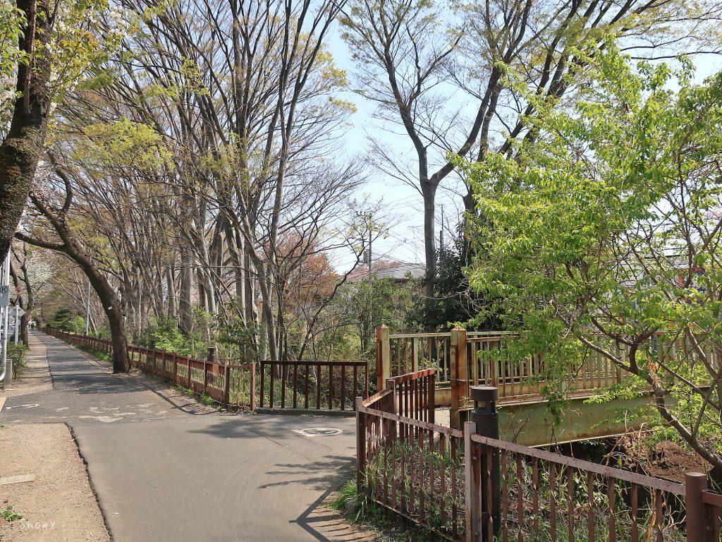 小桜橋と玉川上水と五日市街道の歩道