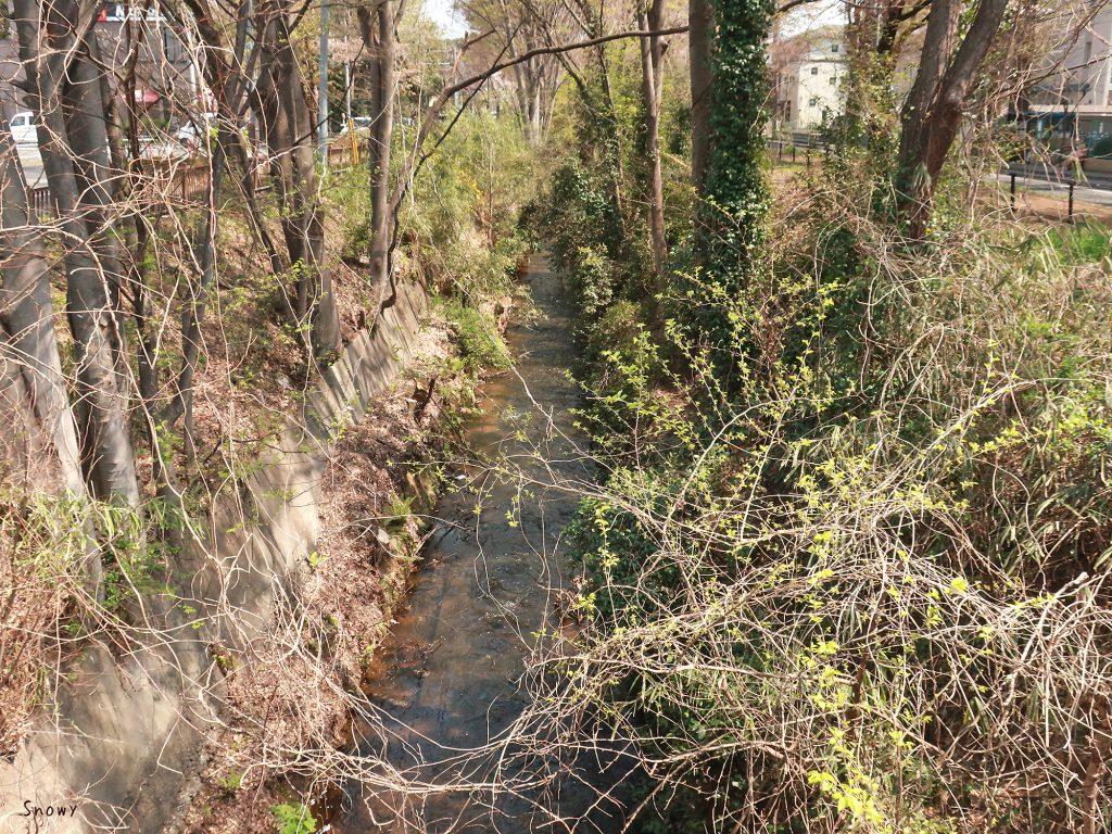 喜平橋から見た玉川上水下流