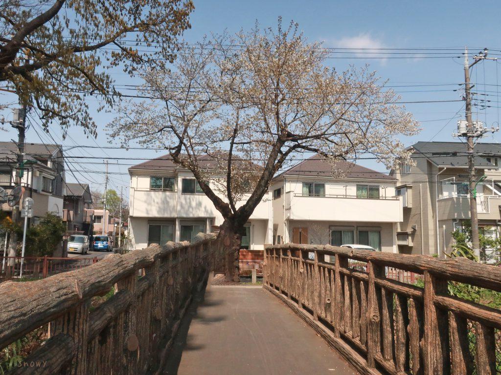 五日市街道の小平上水中北交差点から山野橋と山野通りを見る
