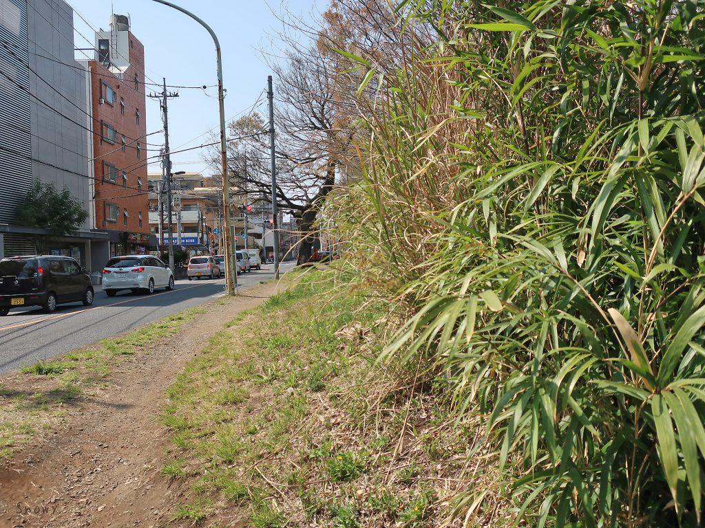 八左衛門橋のたもとから見た小平桜橋方面