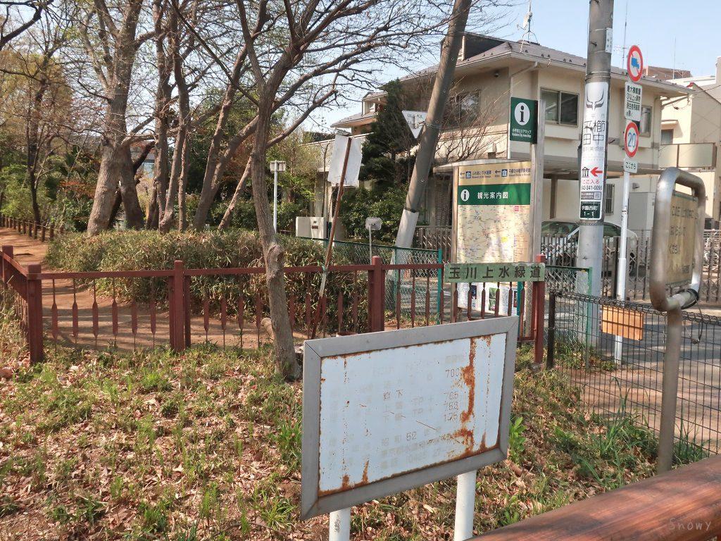 小平桜橋から始まる玉川上水緑道