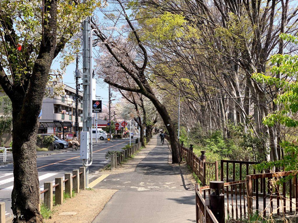小桜橋と五日市街道