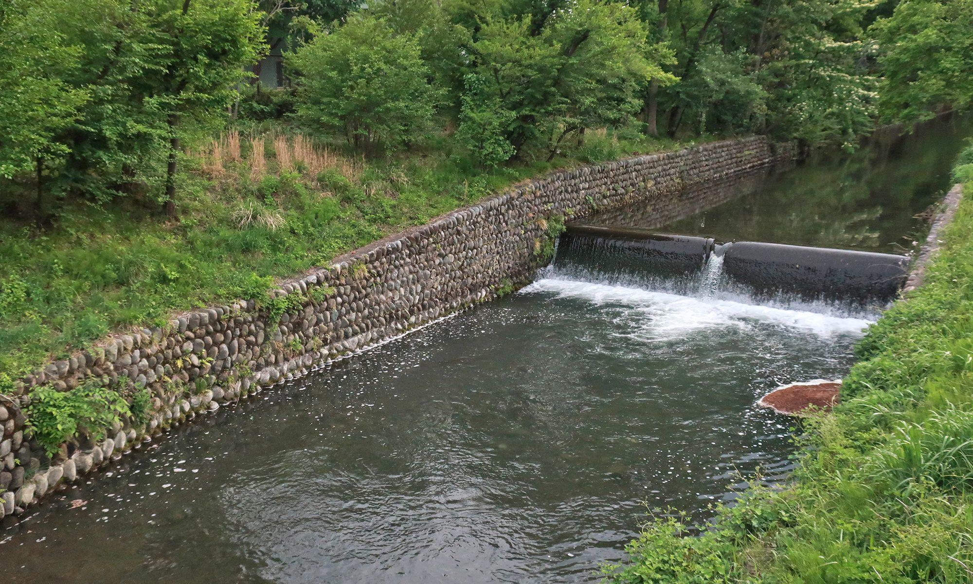 美堀橋近くの玉川上水
