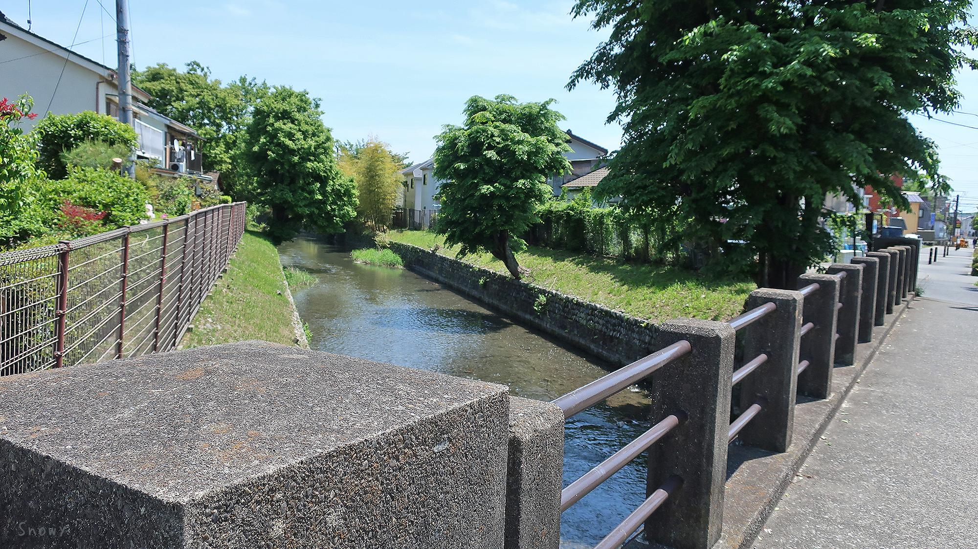 福生橋から見た玉川上水